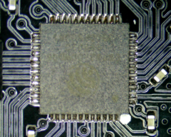 Image of a healthy lolin with clean circuitry